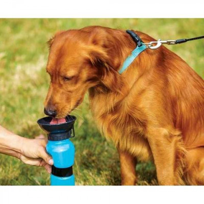 Aqua Dog, bebedero portátil para perro